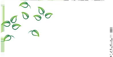 Lawn & Landscape Works Logo